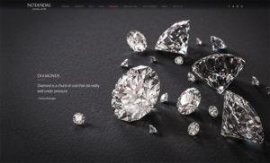 Notandas Website Design