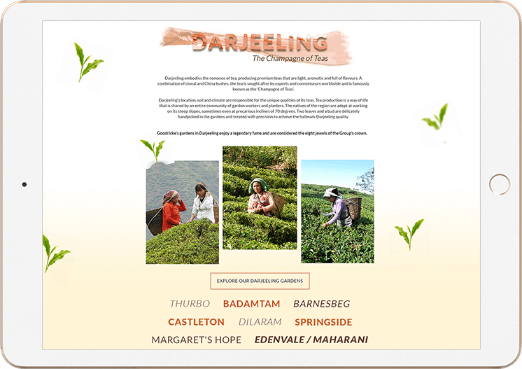 Goodricke Corporate Website Darjeeling Page