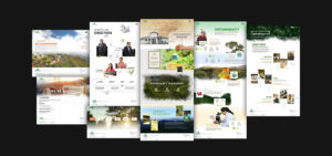 Goodricke Corporate Website Design Collage