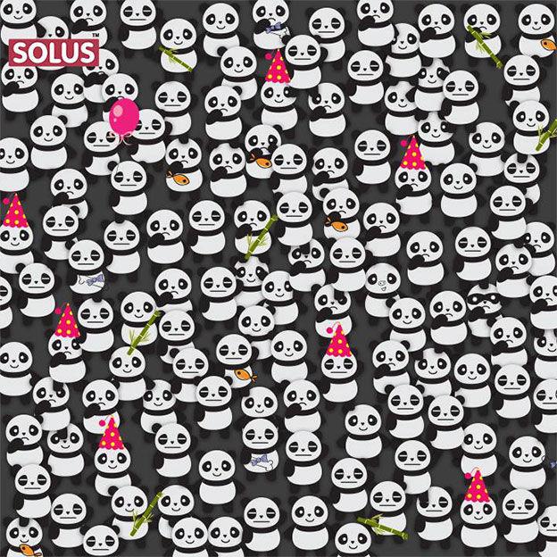 Solus Digital Panda Creative