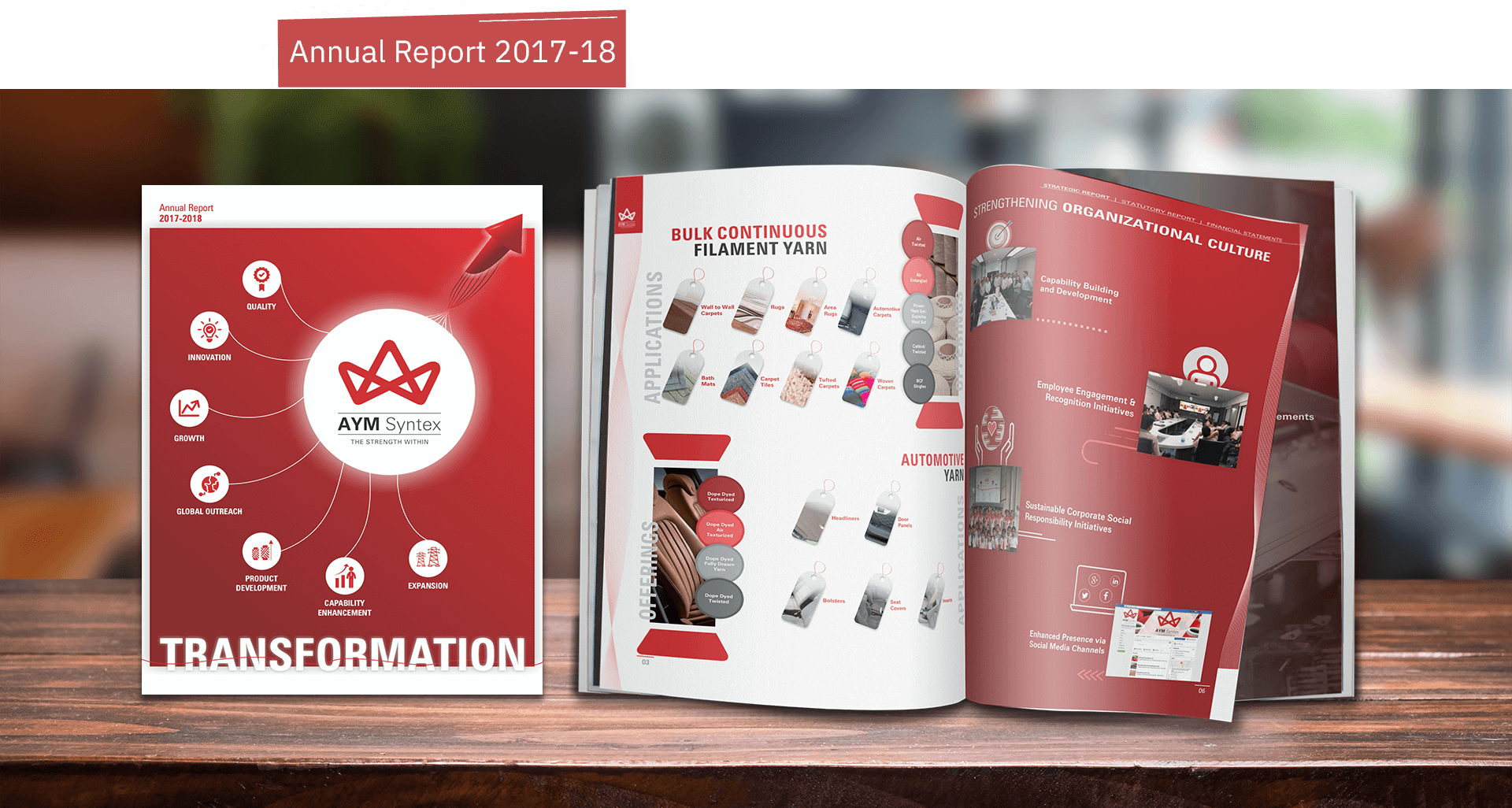 AYM Syntex Annual Report 2017-18