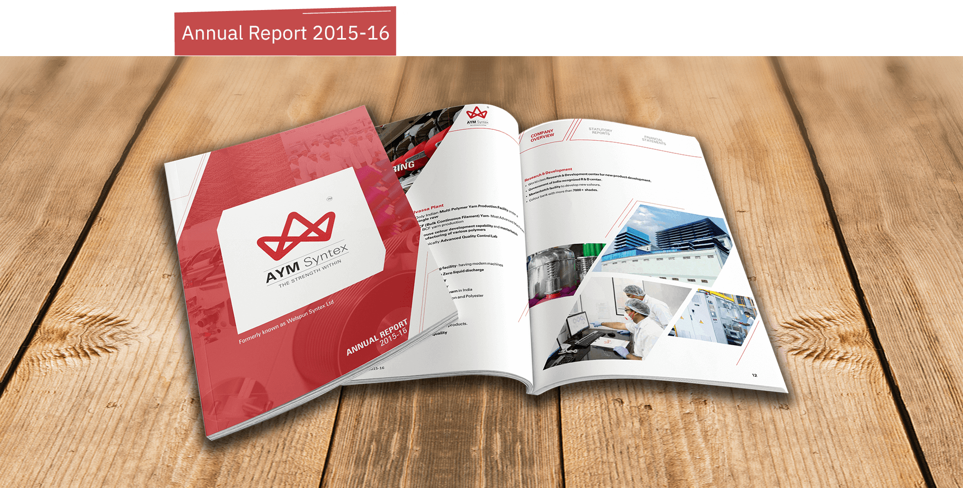 AYM Syntex Annual Report 2015-16