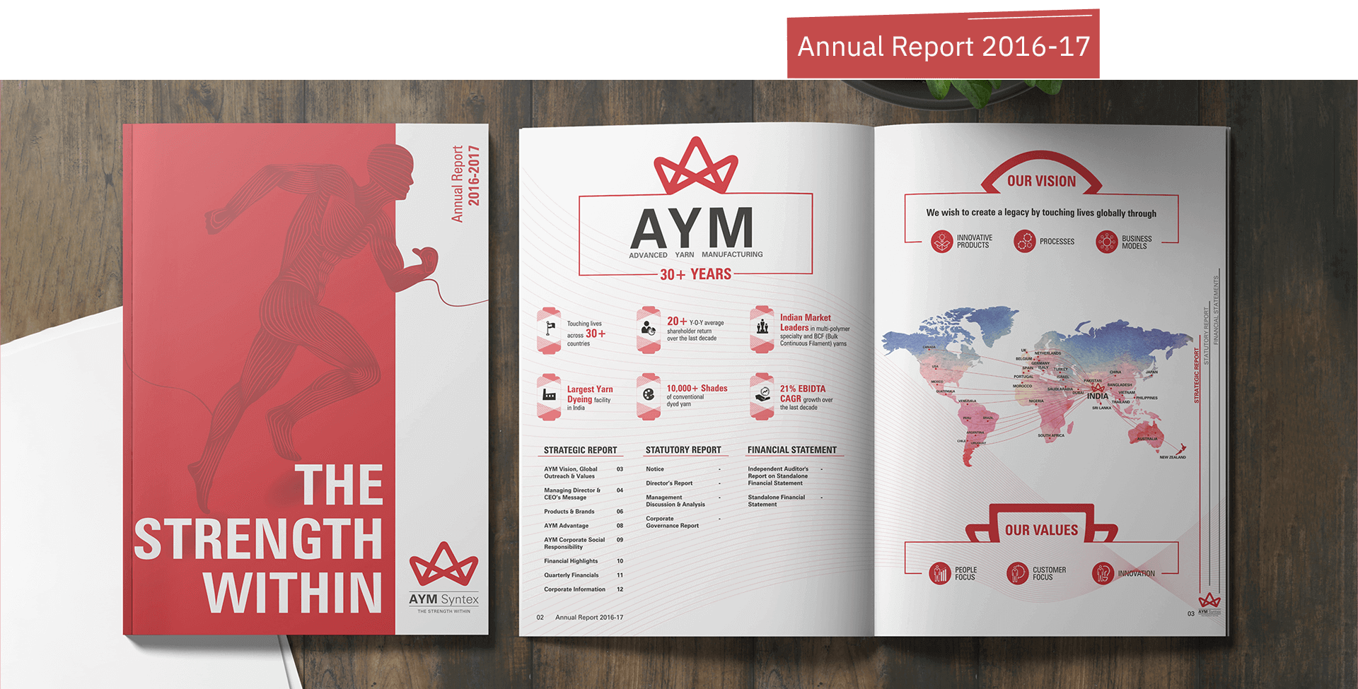 AYM Syntex Annual Report 2016-17