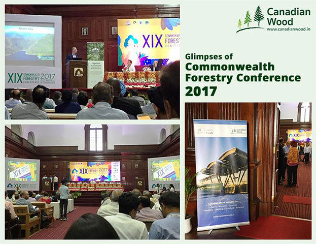 CW Collage Glimpses of Commonwealth Forestry Conference 2017